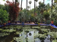 Jardin Majorelle, Marrakech